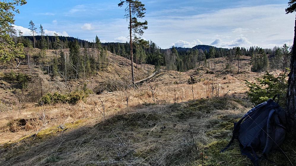 På dagens siste toppunkt, Sørøst for Sagstua (202). Åsen oppe til venstre er Holtehedde (405). Kulen bakerst og litt til høyre, er Grasås (356).