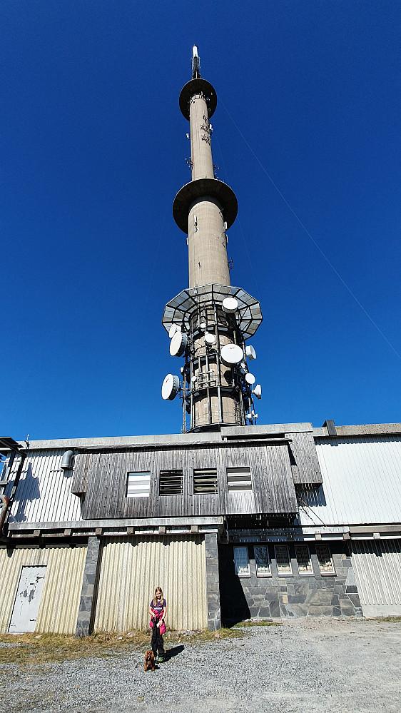 Tårnet på Vestre Vealøs.
