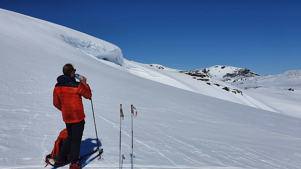 Vi slukker tørsten på bandet like sør for Breinosi Nord (1602). Svær snøskavl i østsiden på denne toppen.