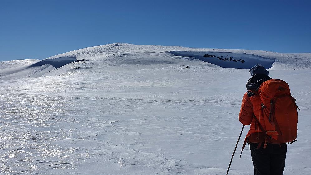 På vei mot Breinosi Nord (1602). Vi gikk opp mellom de to store snøskavlene.
