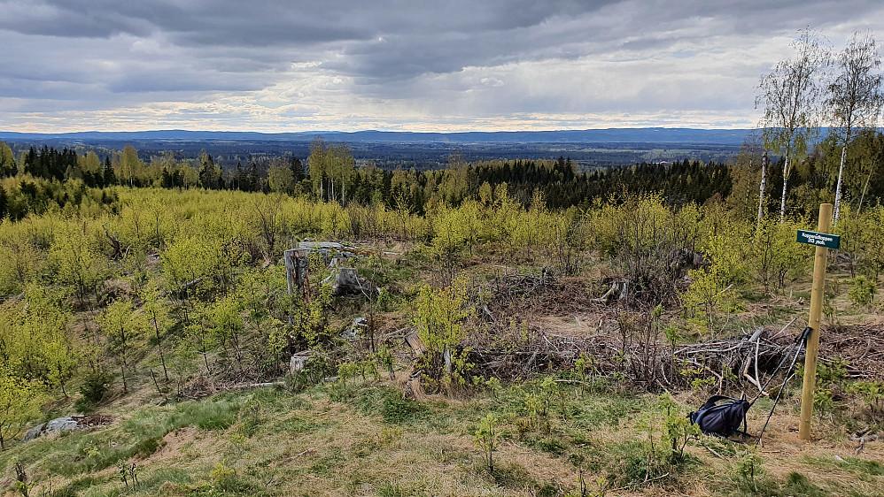 God utsikt fra toppen av Ullensaker.