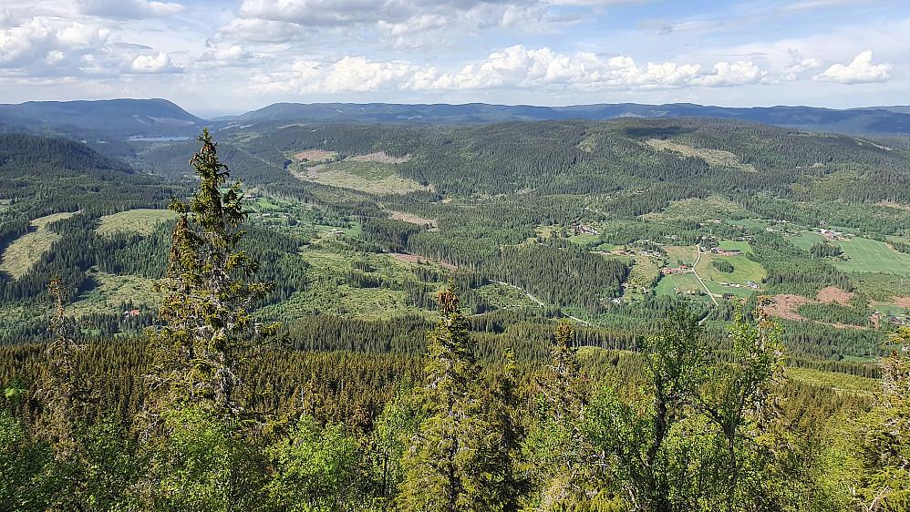 Til å være en skogstopp har Nordliskampen (707) flott utsikt, i hvert fall nordover.