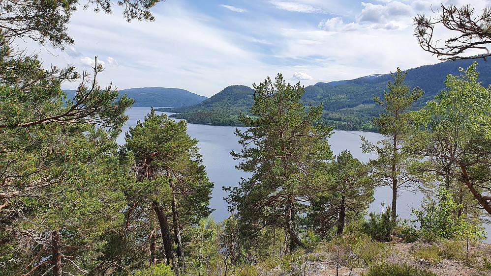 Fra Storøya er det litt utsikt sørover. Åsen midt i bildet er Strandekollen (400), og den var mitt neste turmål.
