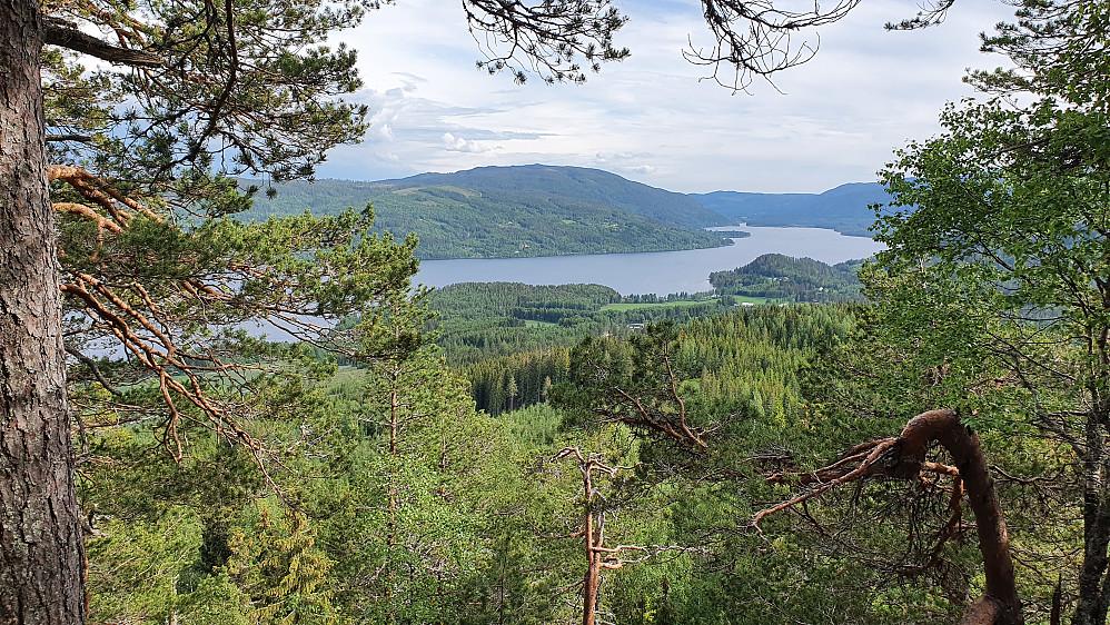 Litt utsikt sørover fra Strandekollen (400).