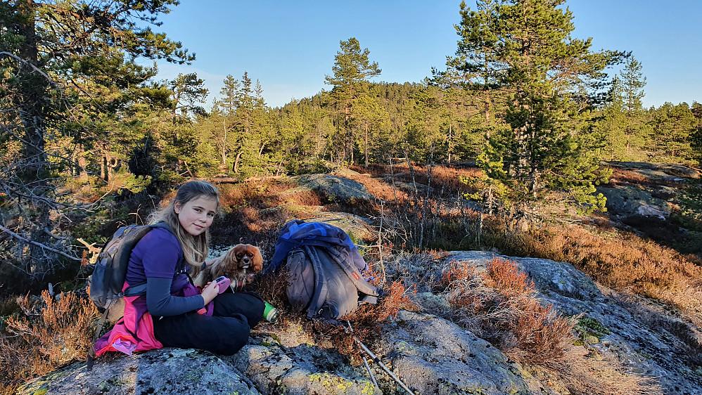 Pause på toppen av Bikkjemyråsen (603). I bakgrunnen midt i bildet, ses litt av Høgnipa (660) mellom trærne.