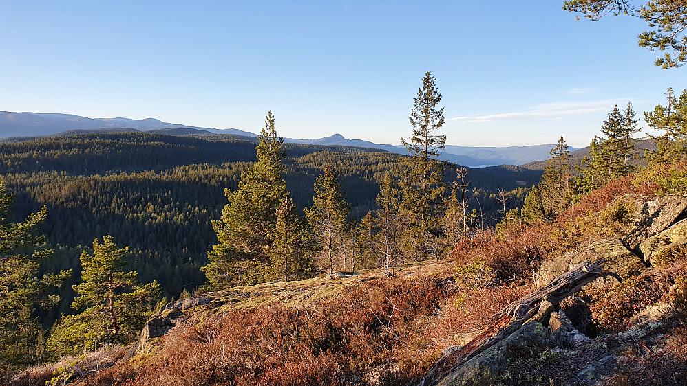 I siste stigningen mot Høgnipa (660), med utsikt mot nordvest. Norefjell helt til venstre i bakgrunnen. Den tydelige toppen midt i bildet er Hestgjuvnatten (1068).