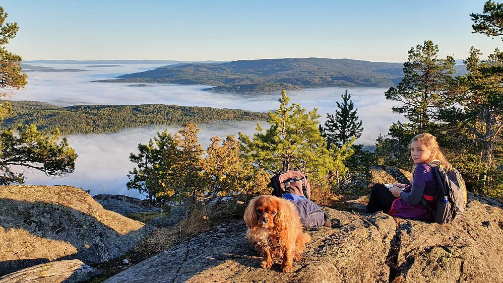 Fabelaktig utsikt mot øst/sørøst fra toppen av Høgnipa (660). Magisk med tåka som fyller de laveste områdene.