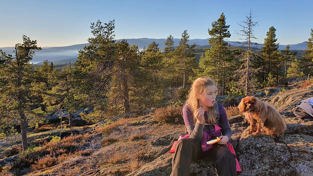 Mot vest og nordvest var det også utsikt. Her med Norefjell i bakgrunnen midt i bildet.