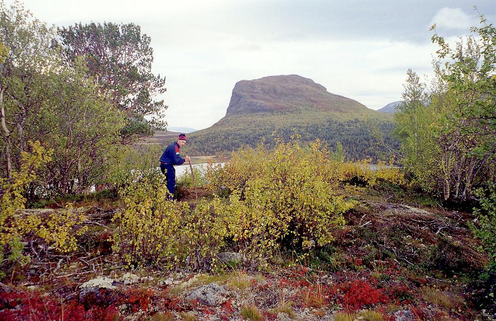 21.09.1997 - Faren min på toppen av Pikåthøgde (1002) i Sjodalen. Fjellet bak er Griningsdalskampen (1331).