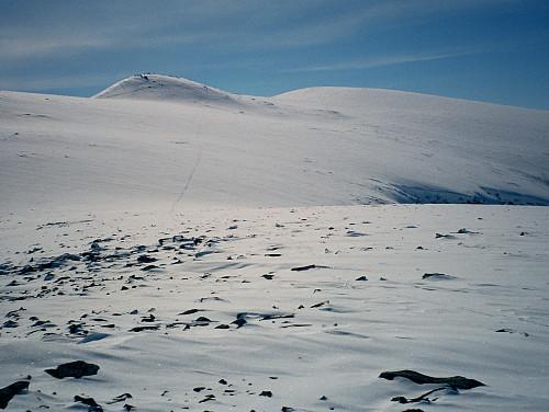 17.04.1999 - Jeg står på Hindnubban Sørvest (1898) og ser tilbake mot Austnubben (2049), som ses oppe til høyre. Mine skispor ses tydelig litt til venstre i bildet.