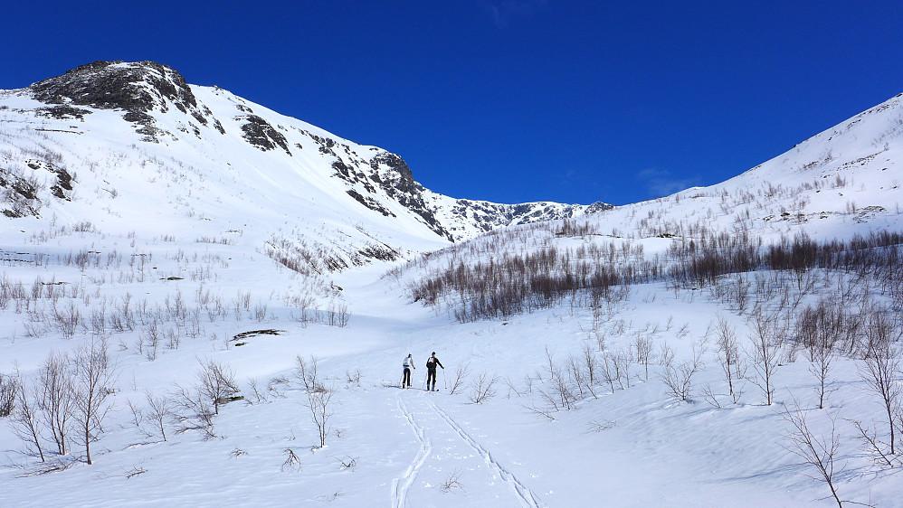 Endelig over skogen med ski på beina. Akkurat der de skulle være.