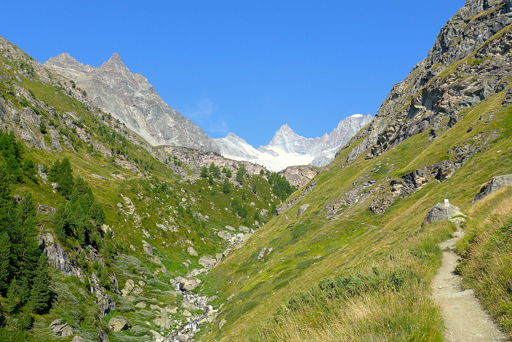 Good path all the way up. Zinalrothorn in the centre.