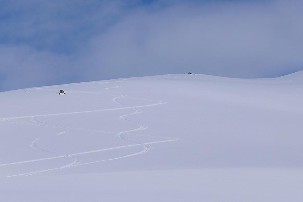 Fint fint skiføre!