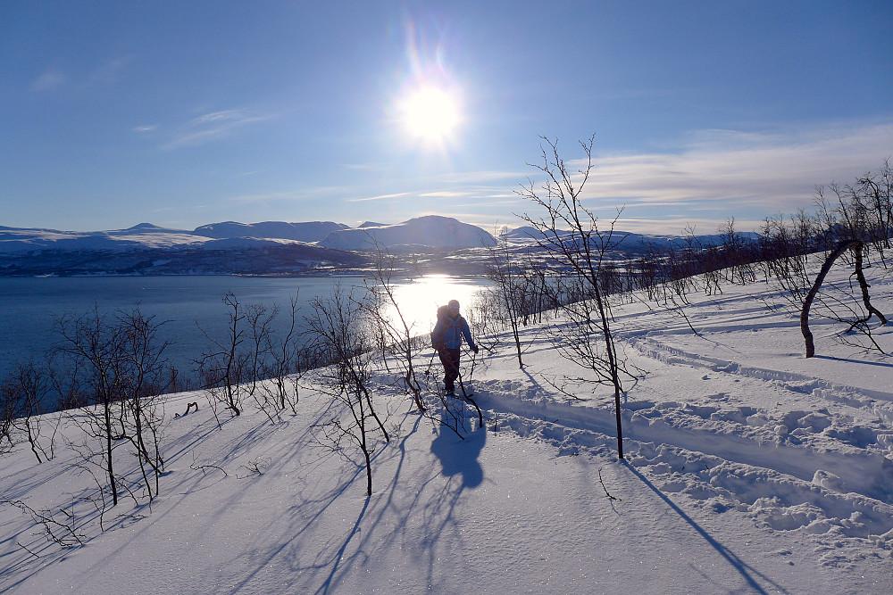 Har begynt å bli glad i Ringvassøytoppene på slike dager. Nydelig utsikt mot hav og fjord og masse sol hele dagen!