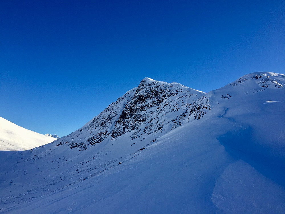 geitenibba ser flott ut fra Kvanndalen