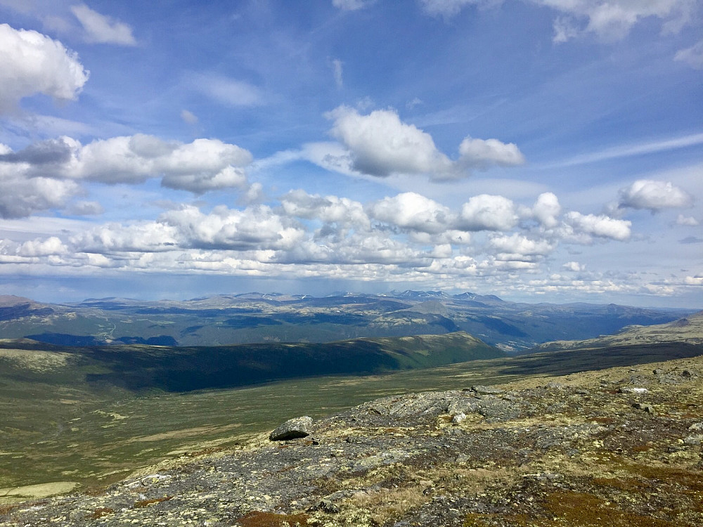 Skardshøi, som faktisk har en flott utsikt i alle retninger. Her mot Rondane
