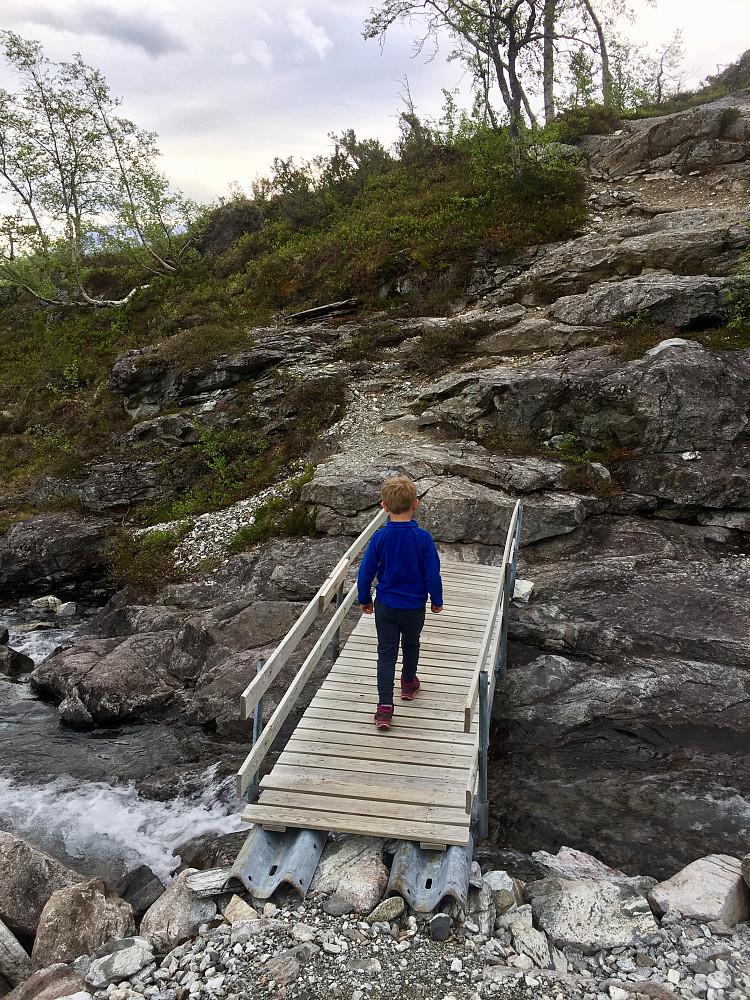 Flott rute opp til Lægdaskard