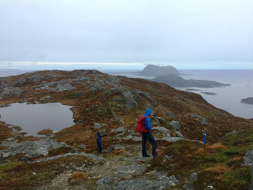 Nesten på toppen med flott utsikt mot Alden og Norskehesten