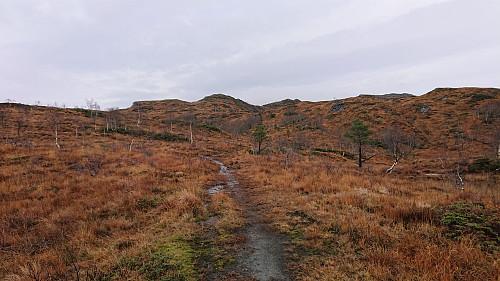 Approaching Såta