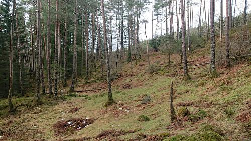 Approaching Dordiplassen