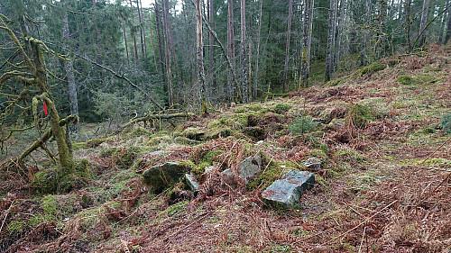 The ruins at Dordiplassen