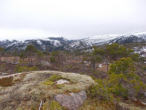 Toppen av Seterhaugen