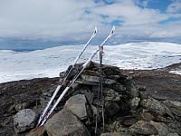 Toppvarden på Nautfjellet