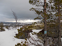 Blåmerket sti mot Kvikndølåsen