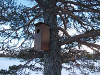 Fuglekasse ved Storbutjønna