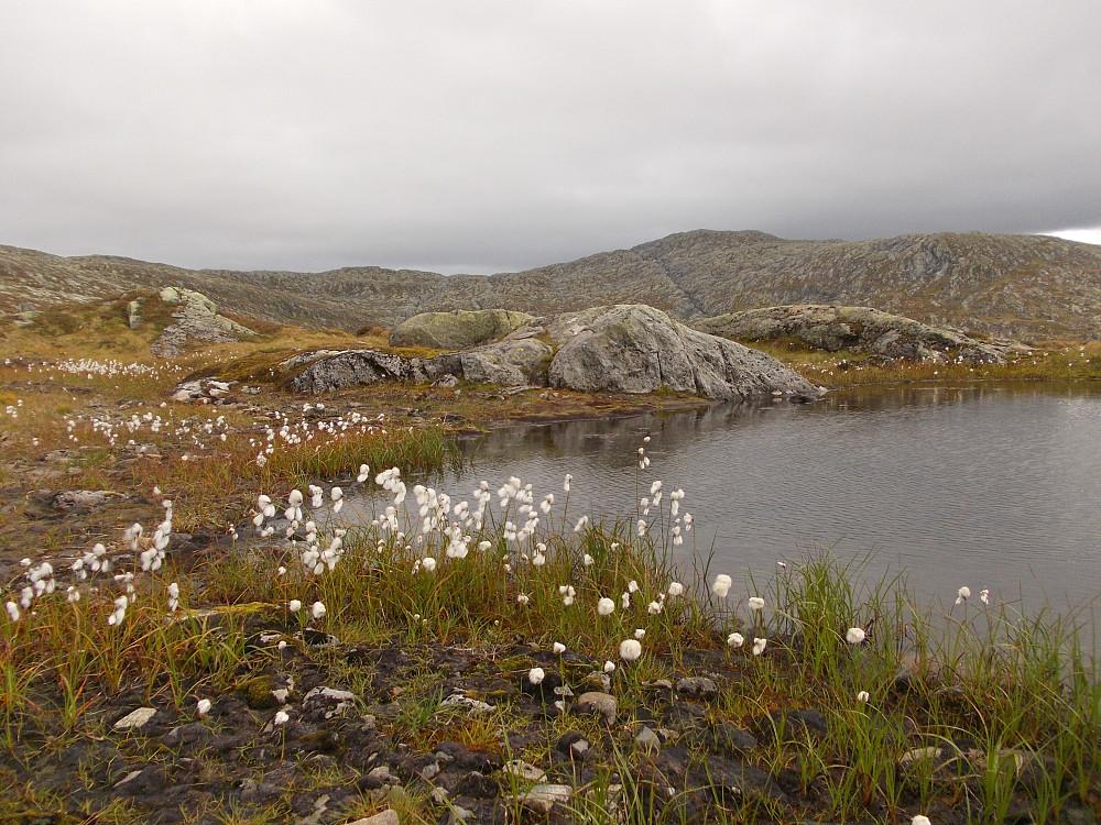 Lita myrulltjønn mellom Storfjellet og Sonlifjellet (i bakgrunnen)
