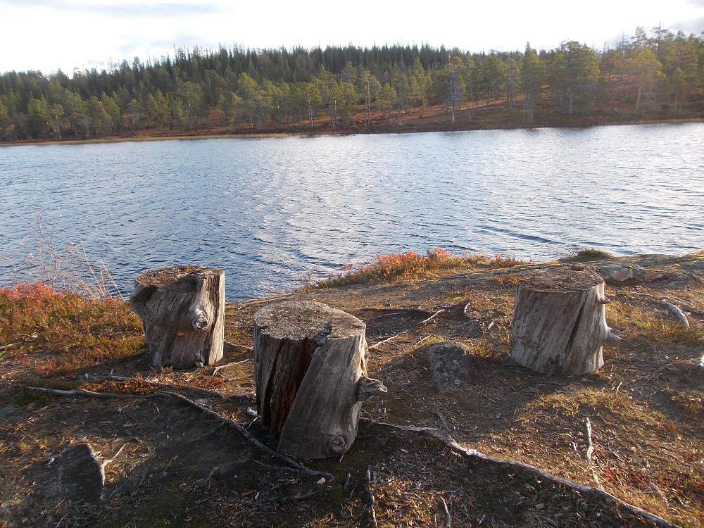 Naturrasteplass ved Djupdalstjønna