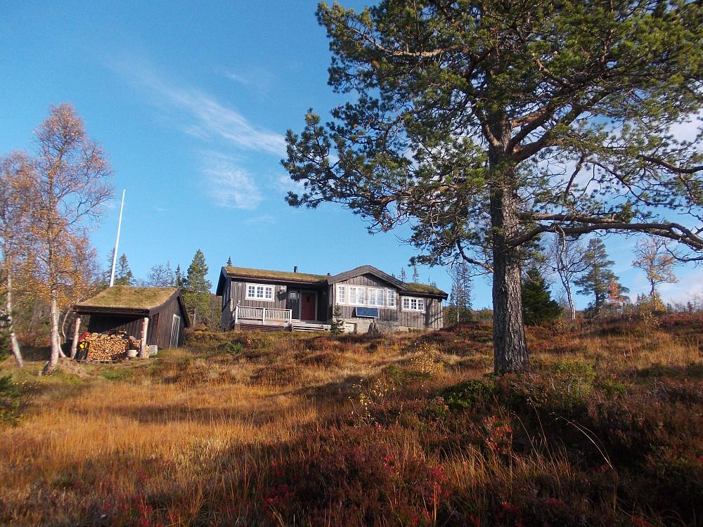 Uroa hytte