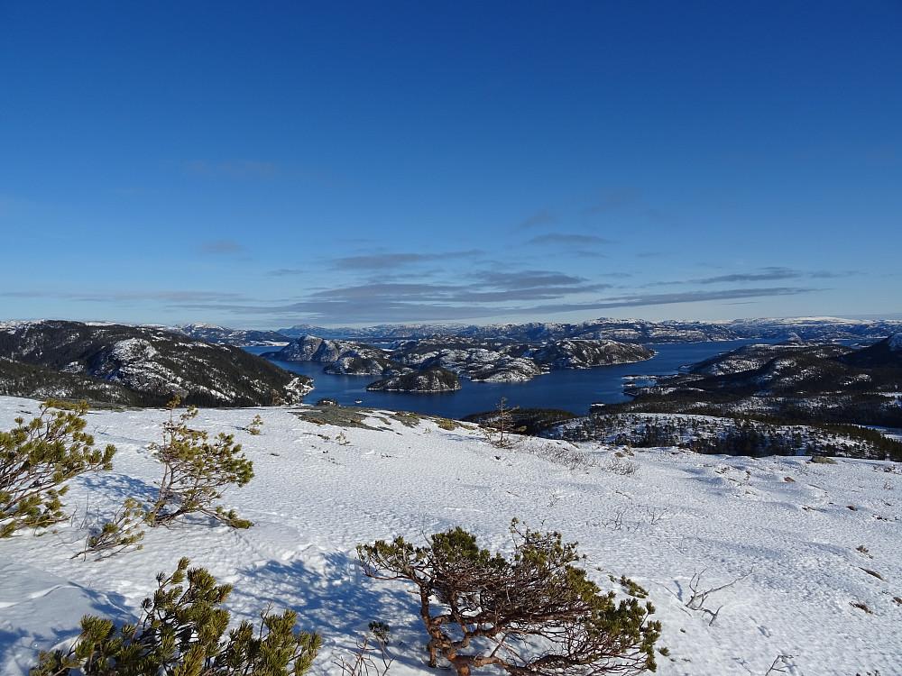 Utsikt fra Klokkatiklumpen mot Hoddøya