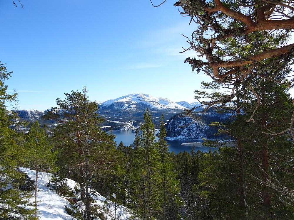 Utsikt mot Hemnafjell fra oppstigningen mot Fjell nord for Tøttdalen