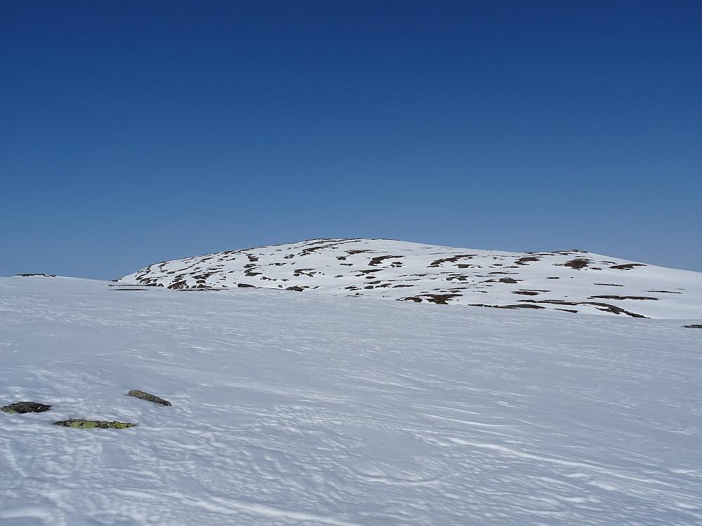 Liafjellet (Meråker)