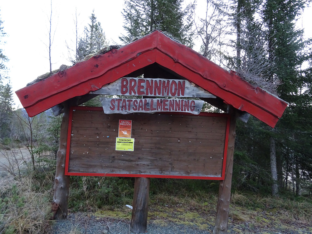 Brennmon Statsalmenning i Nesådalen like før veiens ende.
