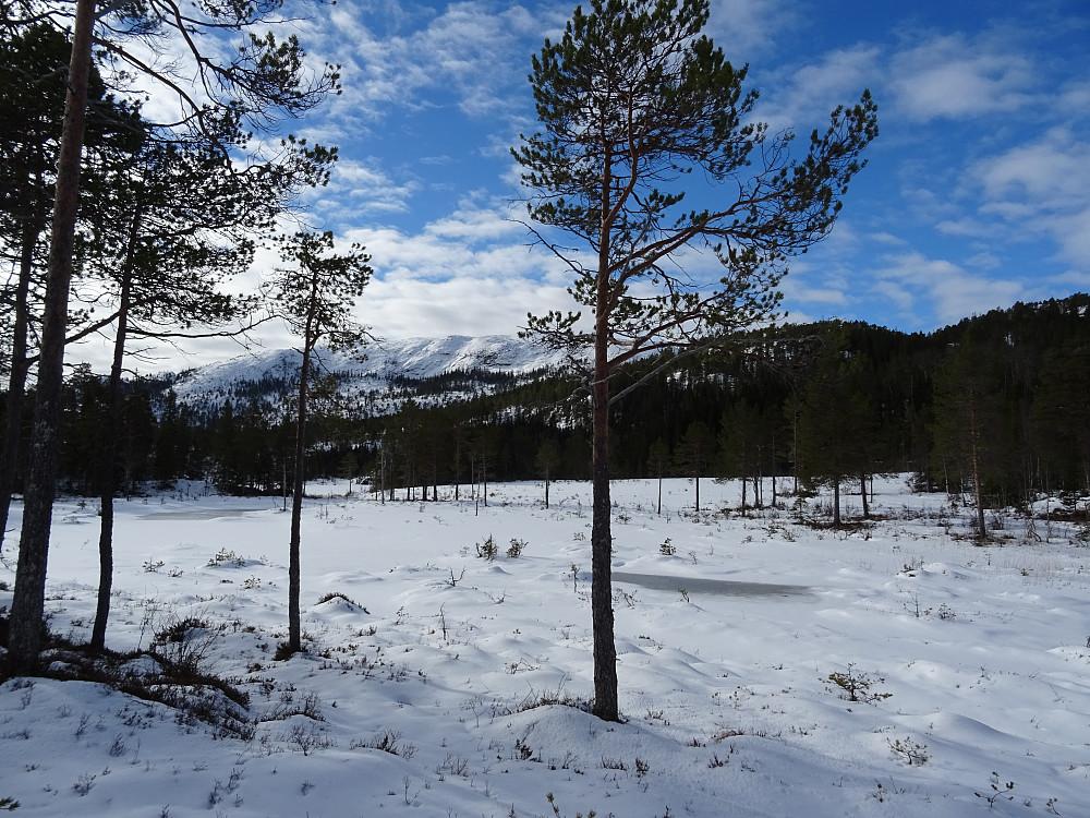 Brattlivatnet med pb-toppen Rindfjellet bak