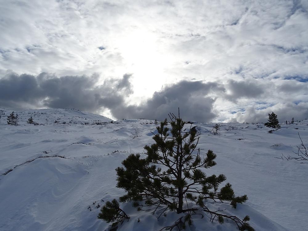 Noen værskyer mot toppen av Groftdalsheia