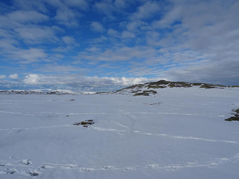 Groftdalsheia til høyre for det lille tjernet sør for toppen