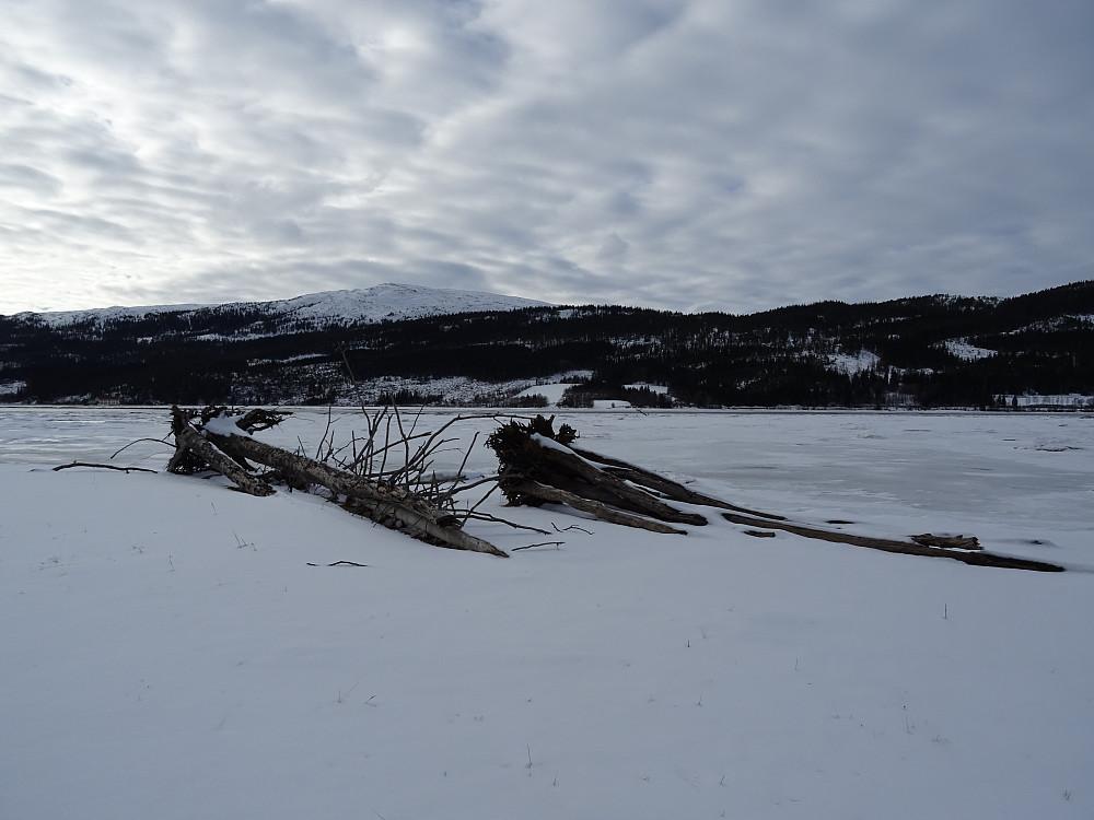 Turen ble avsluttet i fjæresteinan i Dalavika på den islagte fjorden Løgnin