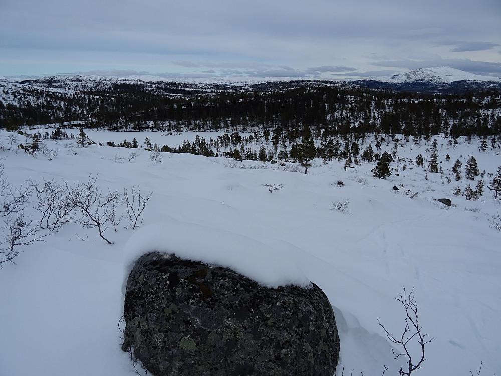 Lissbjørkvatnet. Øyensskavlen til høyre i bildet.