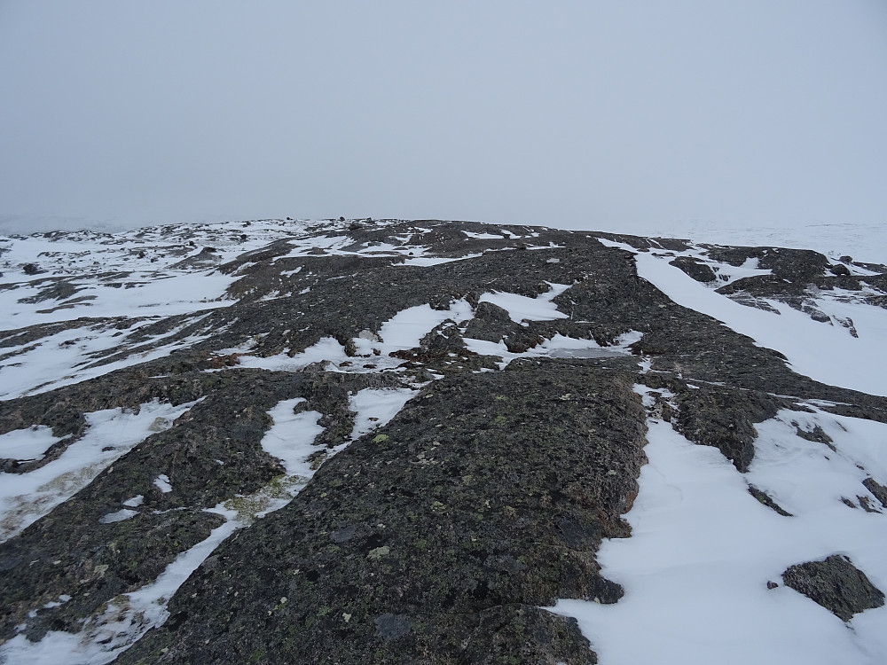 En flat topp på Lissbjørkvassheia