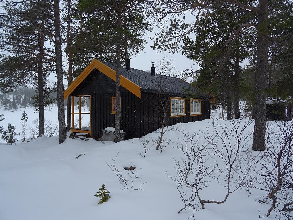 Ei enslig hytte ved Lissbjørkvatnet