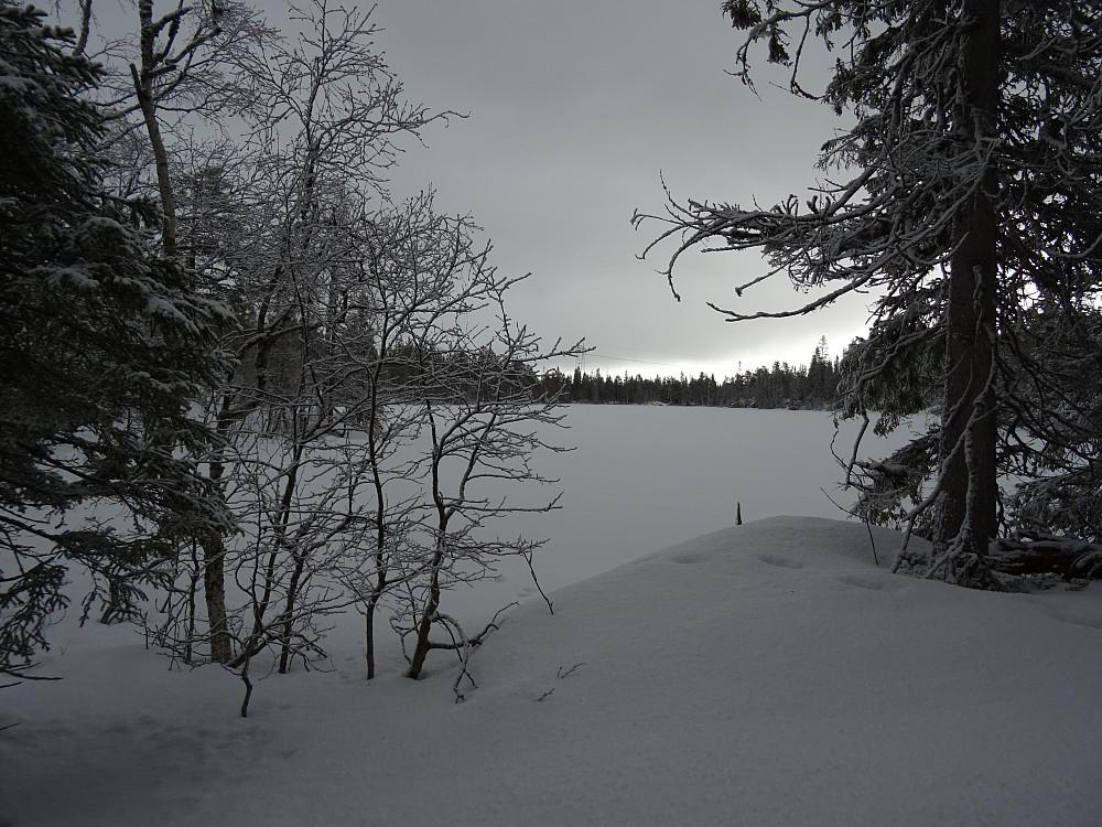 Gikk innom Heimsjøen på returen