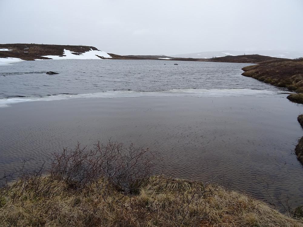 Lite vann øst for Gåstjønna 624
