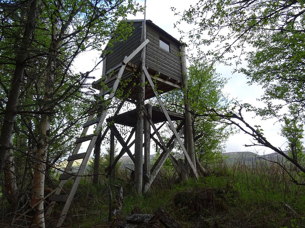 Fin tretopphytte ved Imsdalsvegen. Ikke samme standard som ved Dragsund i Horten, men men.