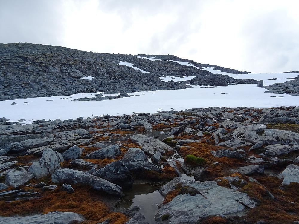 Snørenne siste biten mot Sissihøa