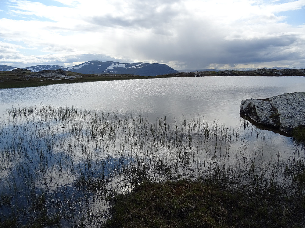 Den eneste tjønna jeg passerte mellom Veslnøsa og Ålmdalen