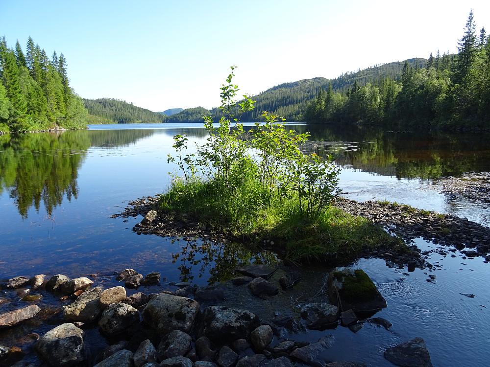 Utløpet av Langvatnet.