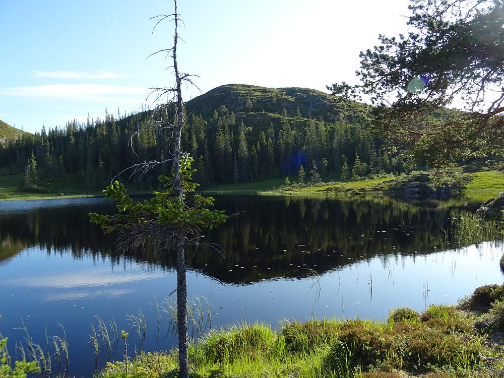 Vann nr 2 ( 332 moh) Her ser du Måssåhatten bak. Gå opp på Måssåhatten på høyre del av fjellet.